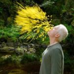 Andy Goldsworthy- Short notes | Know everything in seconds-artandcrafter.com Land art