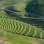 Land art– Definition | Characteristic | Best artworks |artandcrafter.com